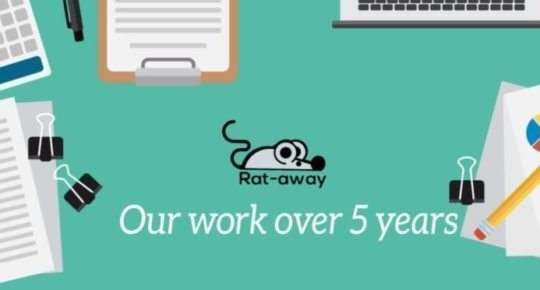 rat-away-บริการ-กำจัดหนู-ด้วยน้ำยาสมุนไพร-rat-control-service-in-Thailand-30